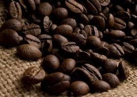 Wild Kopi Luwak 野生麝香貓咖啡