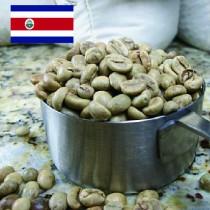 哥斯達黎加 (生豆)